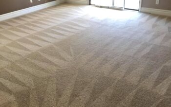 roberto-carpet-clear-062